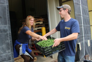 Sarah and Kyle share the load of fresh-picked green beans