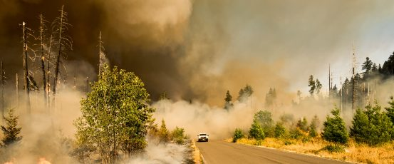 Resources for Farmers Affected by 2020 West Coast Wildfires