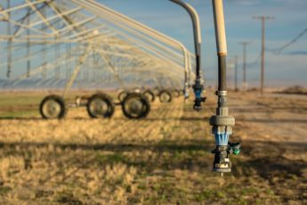 Resources for Farmers and Ranchers Facing Drought